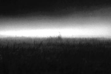 dark_ambient